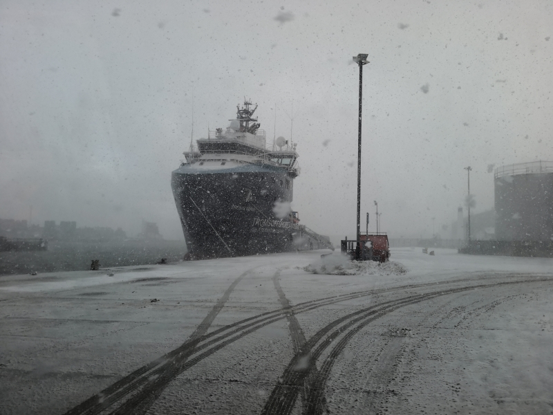 Beast from East in the harbour
