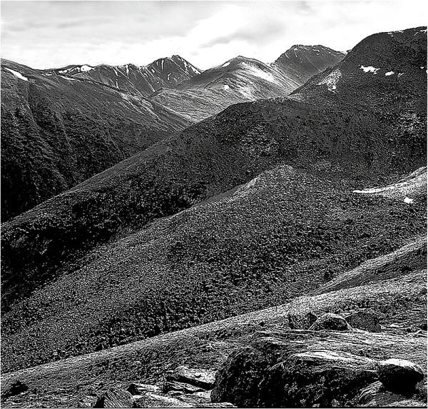 A treeless, rocky terrain