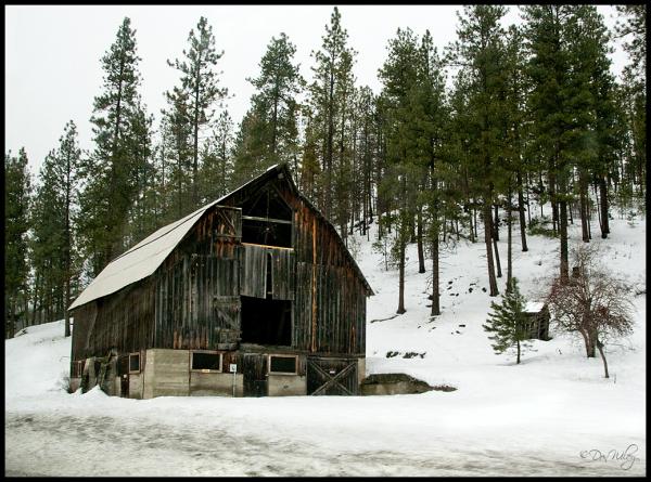 Dark barn drive by shot