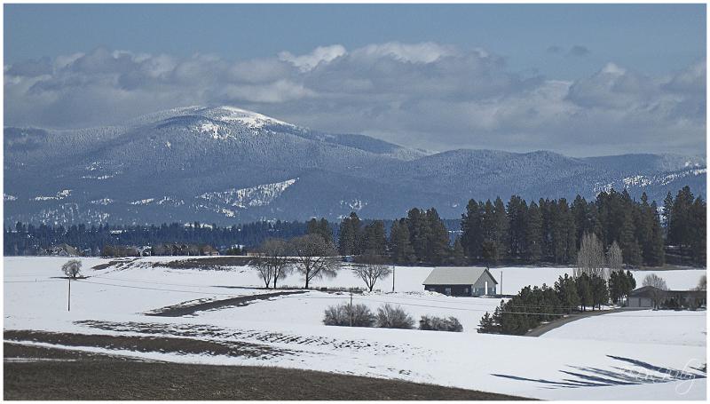Mt Spokane View