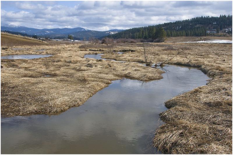Peone Wetlands