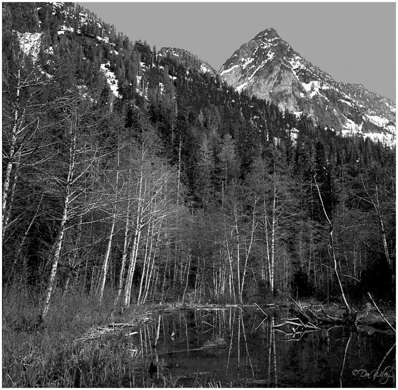 Reflection Mountain