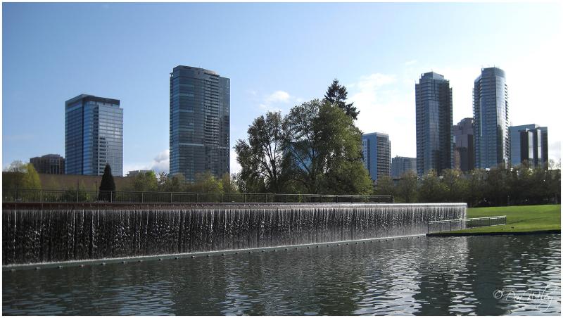 Bellevue Washington parks