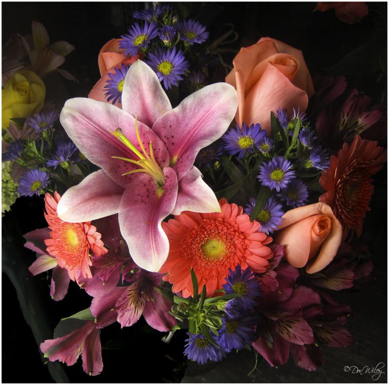 Refrigerated Flowers