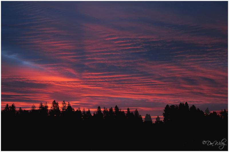 Yesterday's Sunrise 3.11.10