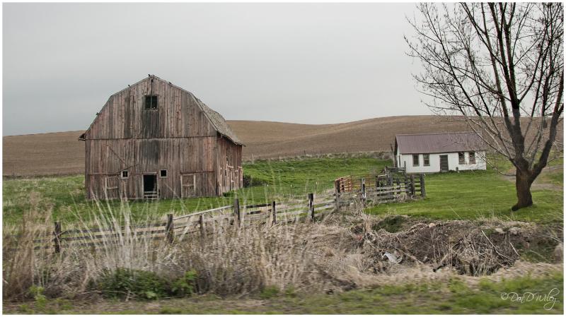 Farm out west
