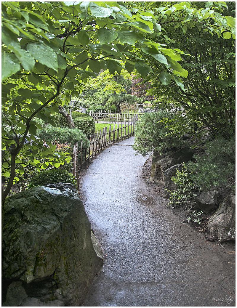 An inviting walk