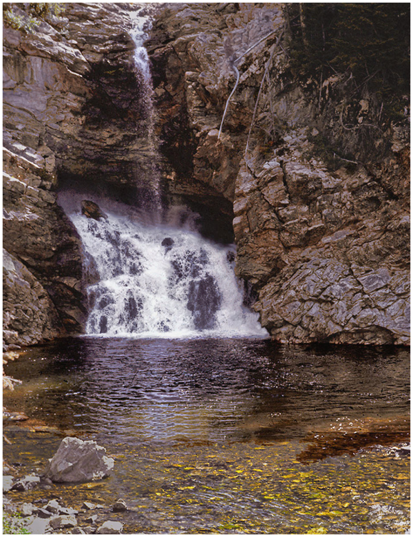 Name The Falls - Lower Butte Creek Falls