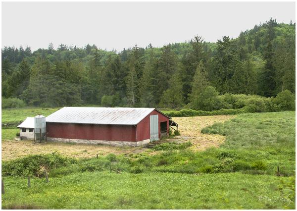 Tiny stream and barn