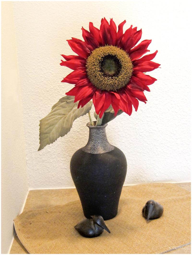 Sunflower?