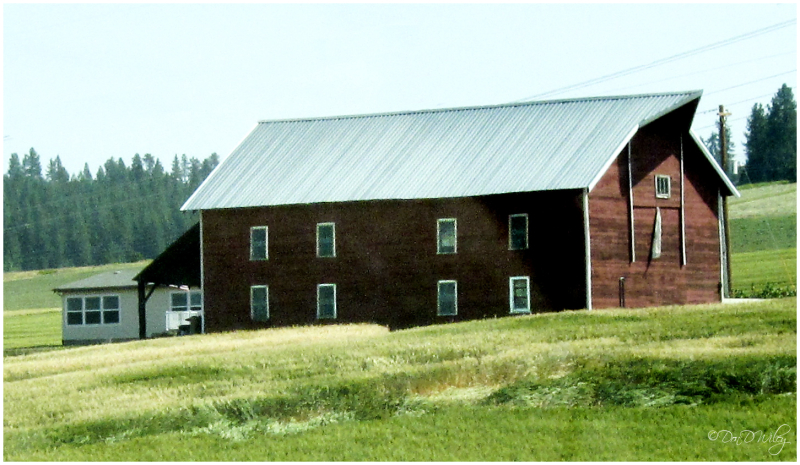 Barn or House?