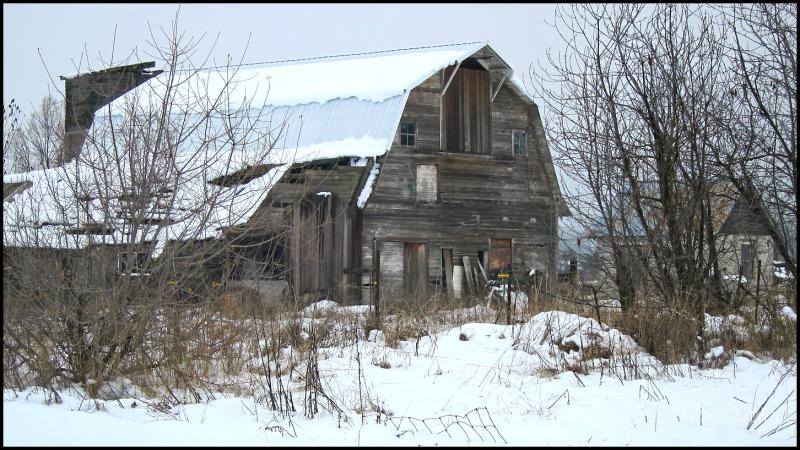 Barn and Milk House
