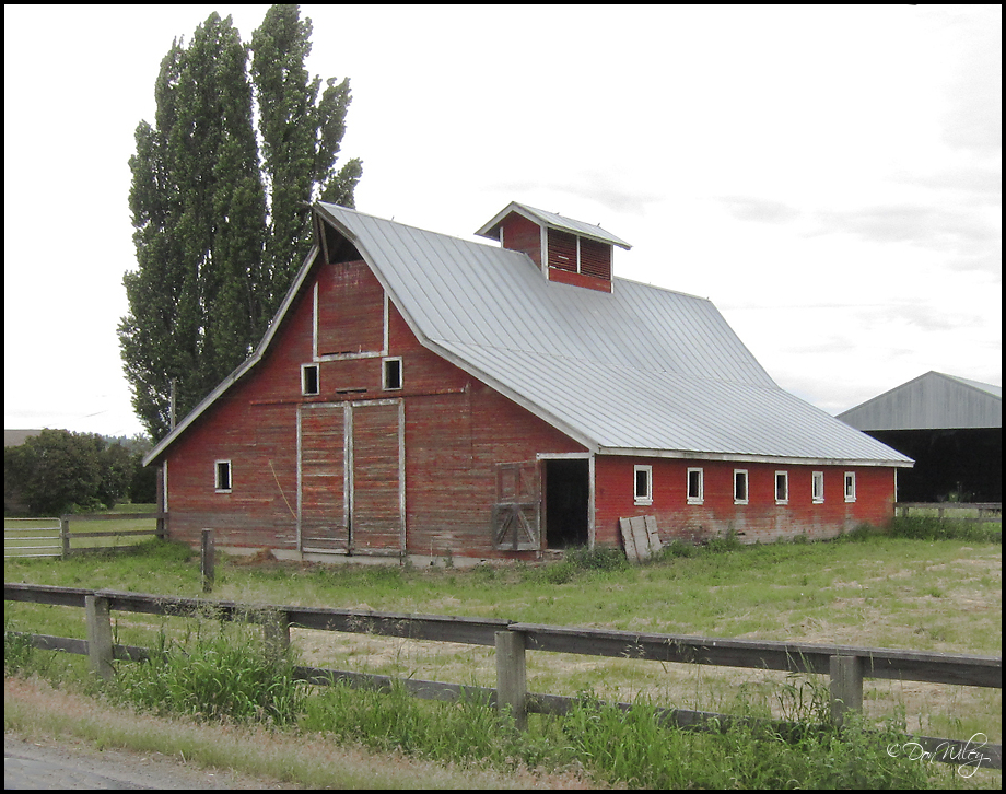 Bruce Road Barn