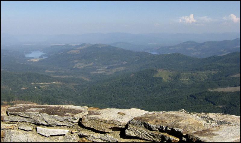 Newman Lake View