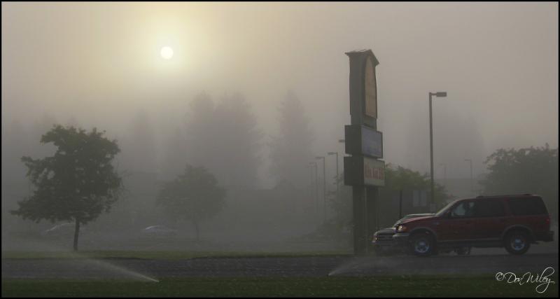 Mall Fog