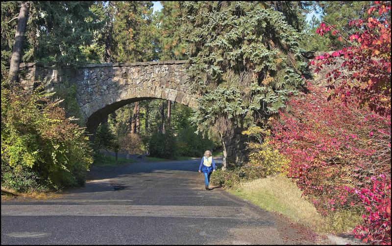 A Bridge in Manito Park