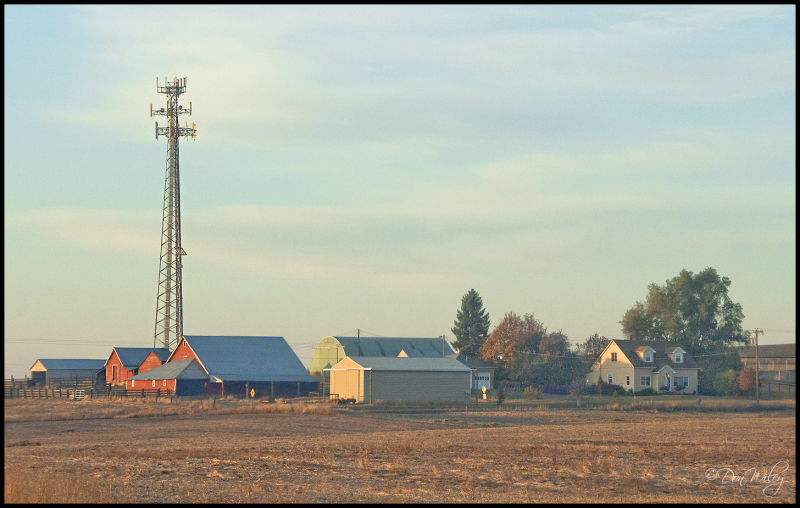 Cell Tower Farm
