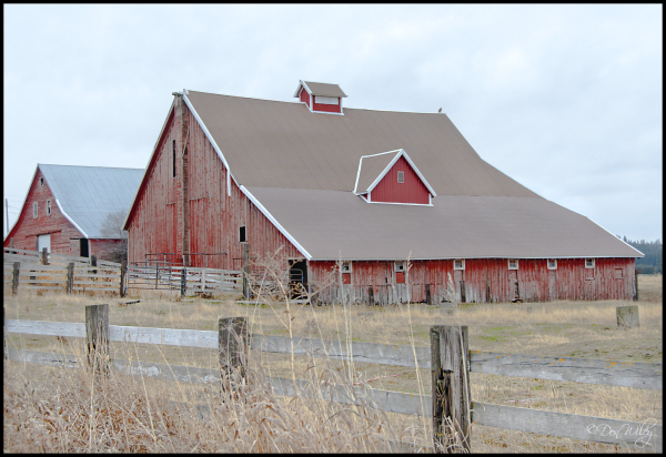 Dual Barns