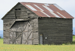 Lonesome Shed