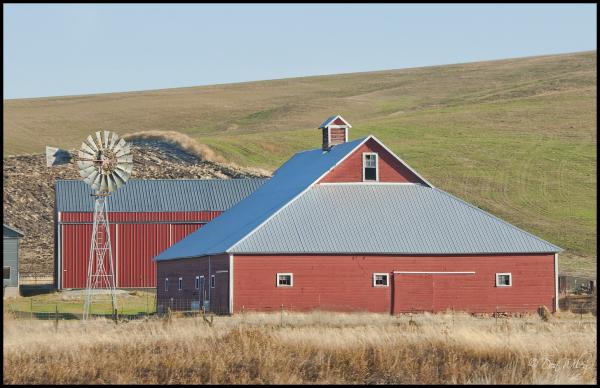 Winter Wheat Barn