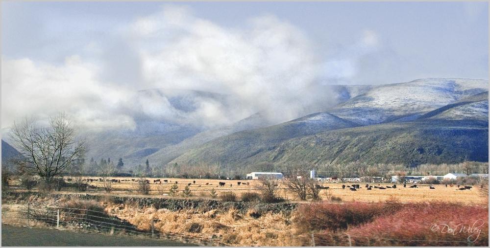 Road To Yakima