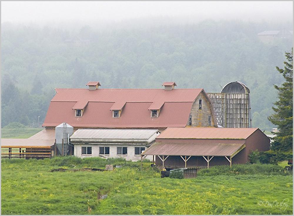 Chimacum Valley Barn