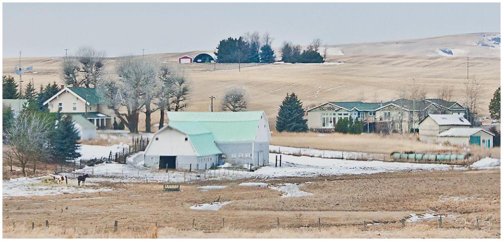 West Farmyard