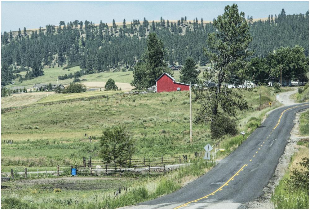 Forker Road