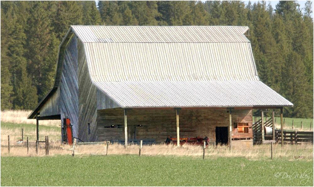 White Roof Barn
