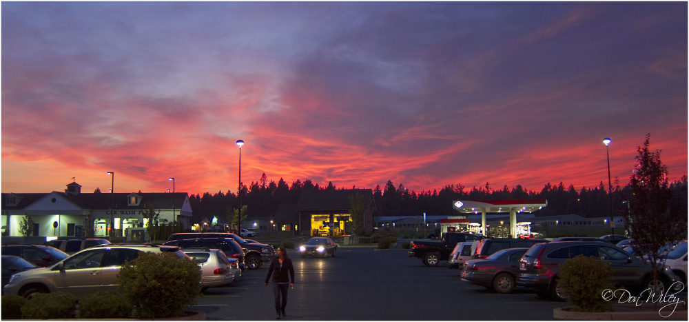 Fred Meyer Sunset