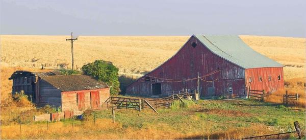 Deer Park barn