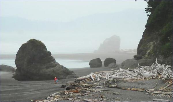 Coastal Mood