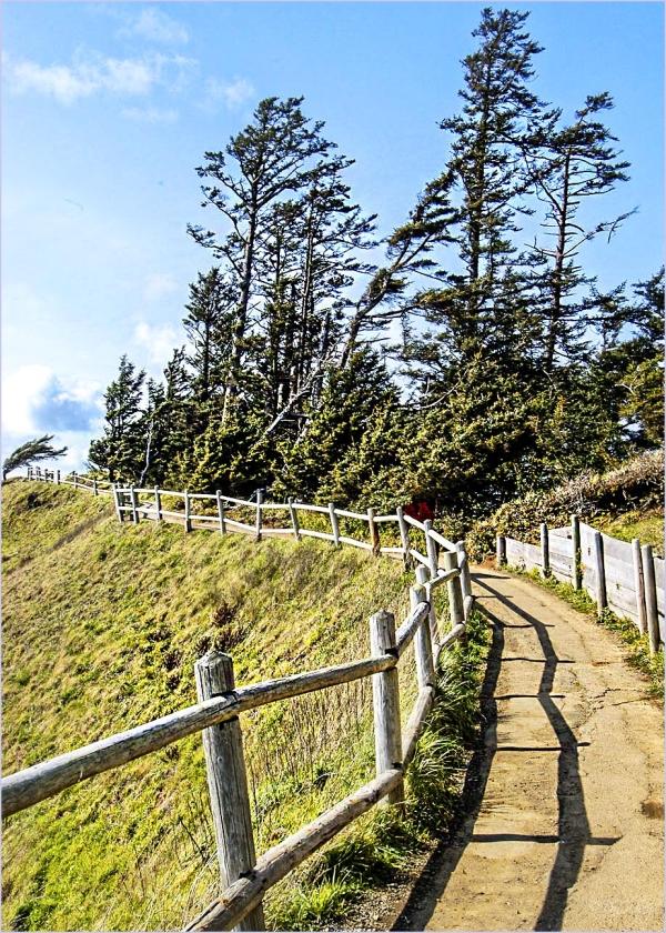 Fenced Trail