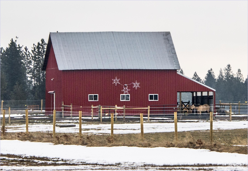 Cheney Road Barn