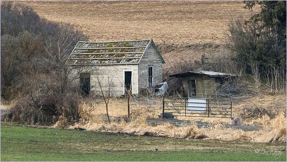 Cabin near the road
