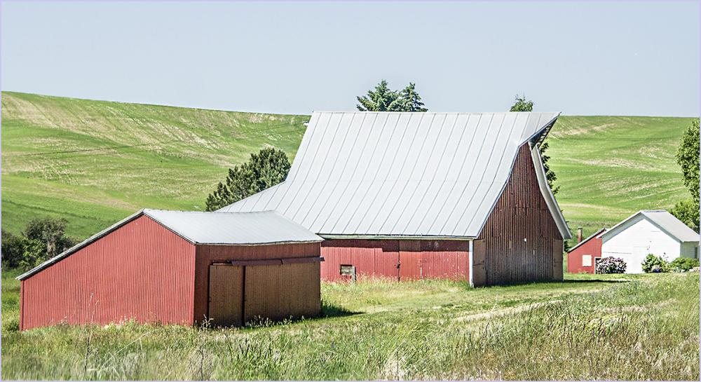Barn - wheat country
