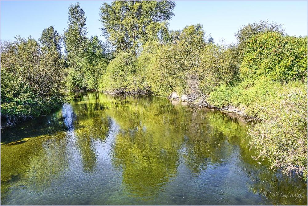 Little Spokane downstream