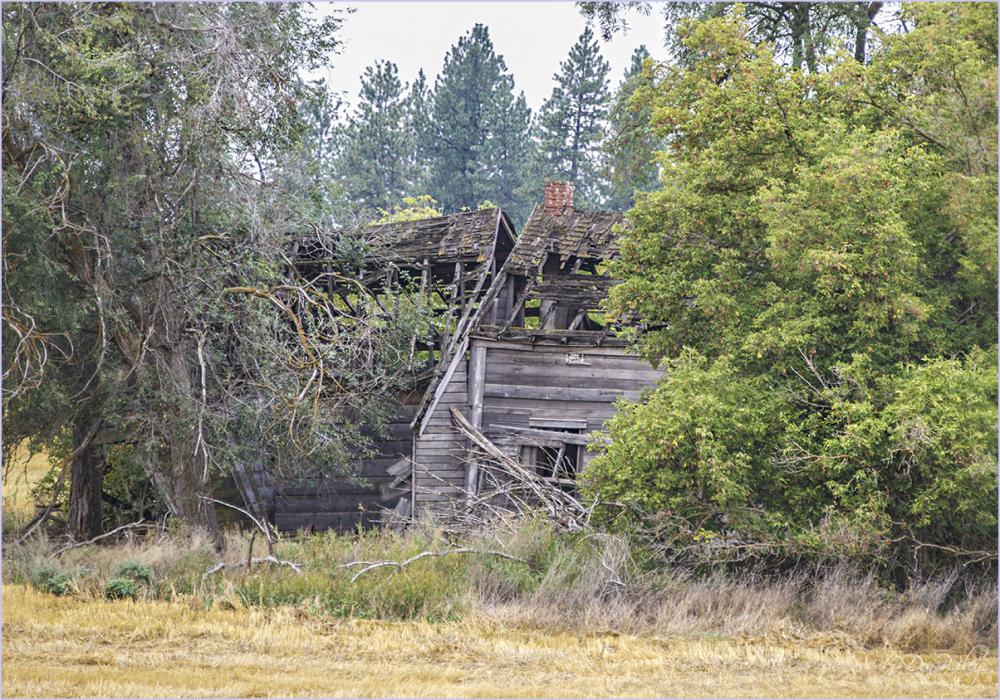 Farm Home Remains