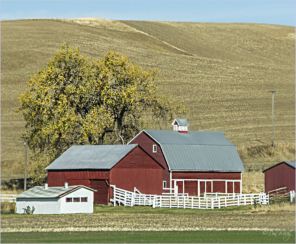 Barn in the Palouse hills.