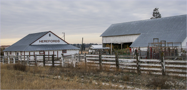 Hereford Ranch