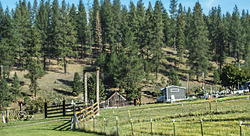 Electric Fence Farm
