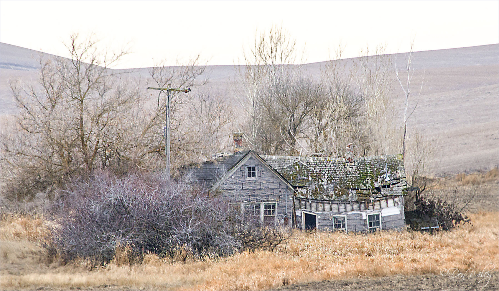 Another abandoned home