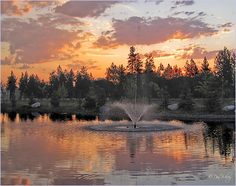 Summer on Wandermere Pond