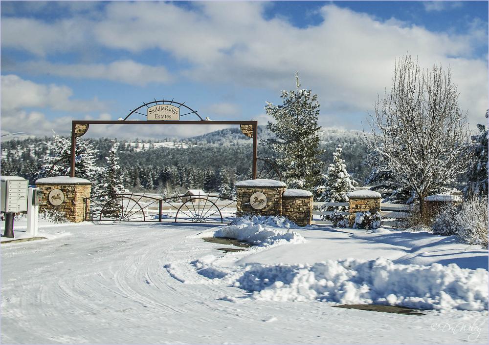 Saddle Mountain Estates