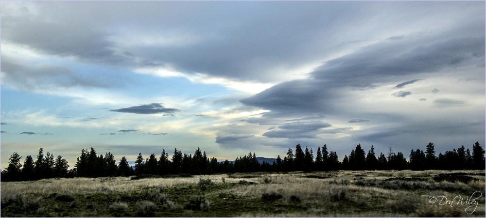 Western Sky
