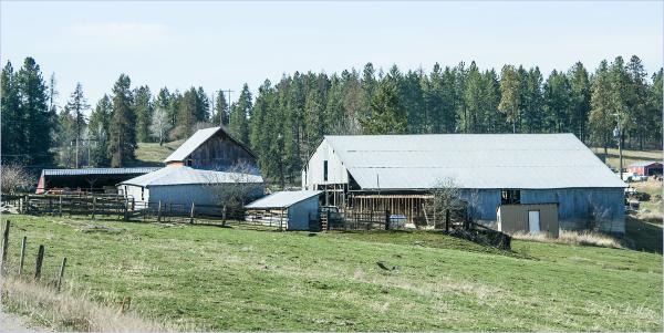 Sheds and Barns