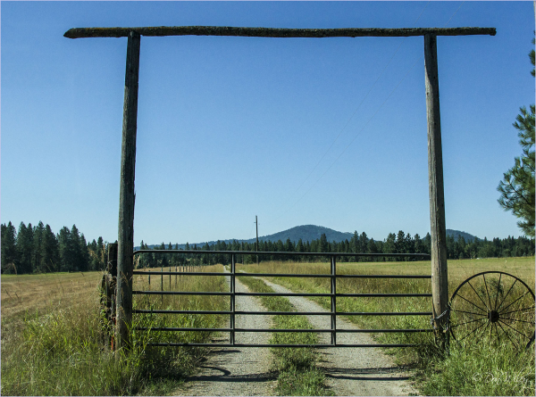 A Functional Gate