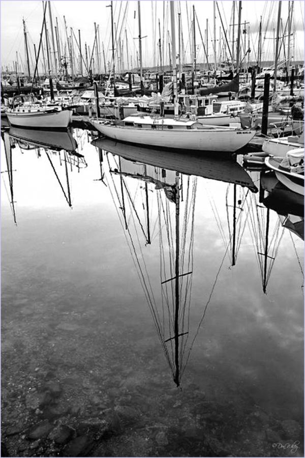 Sailboat Shadows