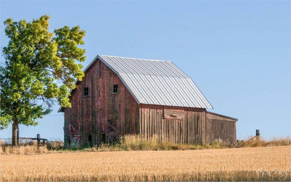 landscapes, barns, farms
