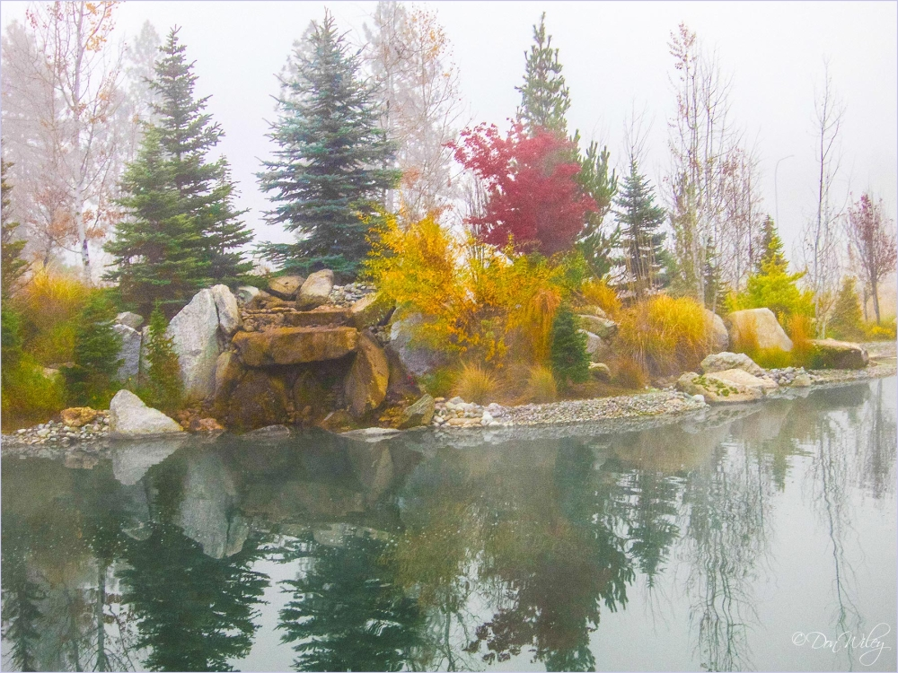 Fall Colors on the Pond